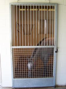 stall_barn_door_galvanized_hinged_1