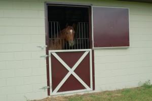 stall_barn_door_dutch_steel_hinged_16