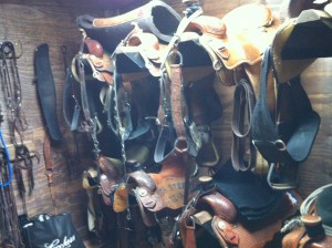 stall_barn_accessories_15