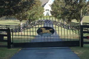 custom_fabricated_personalized_metal_swinging_steel_entrance_estate_farm_ranch_driveway_gate_9