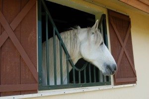 custom_made_fabricated_metal_home_house_ranch_estate_farm_barn_stall_stable_window_grill_bars_25